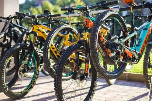 E-bike flotta